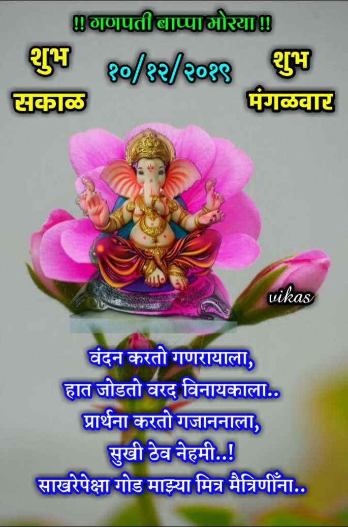 ✨शुभ मंगळवार - गणपती बाप्पा मोरया शुभ १० / १२ / २०१९ सकाळ शुभ मंगळवार vikas वंदन करतो गणरायाला , हात जोडतो वरद विनायकाला . . प्रार्थना करतो गजाननाला , सुखी ठेव नेहमी . . ! साखरेपेक्षा गोड माझ्या मित्र मैत्रिणींना . . - ShareChat