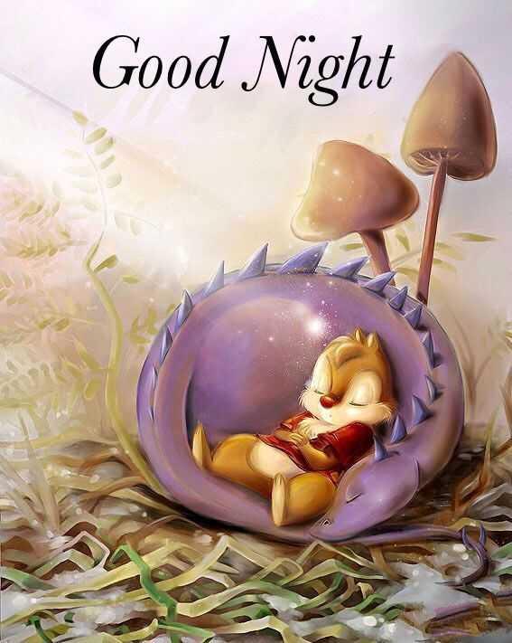 ✨good night✨ - Good Night - ShareChat
