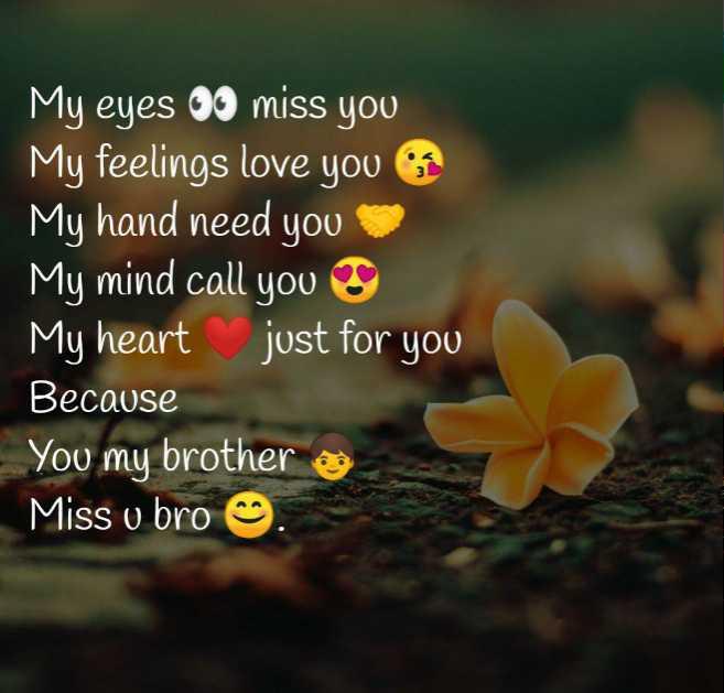 ❣എന്റെ സ്റ്റാറ്റസ്❣😊😍😎 - My eyes 00 miss you My feelings love you My hand need you My mind call you My heart just for you Because You my brother Miss v bro @ - ShareChat