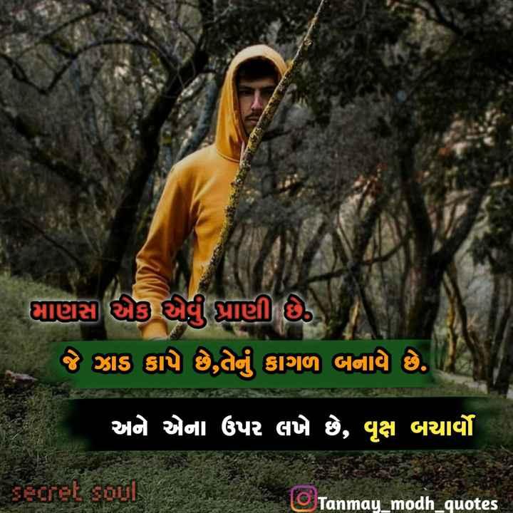 ❣️❣️shayari❣️❣️ - માણસા એક એવું પ્રાણી છે . ) જે ઝાડ કાપે છે , તેનું કાગળ બનાવે છે . ' અને એના ઉપર લખે છે , વૃક્ષ બચાર્યો secret soul Tanmay _ modh _ quotes - ShareChat