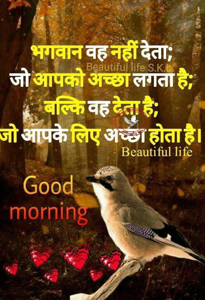 ❤ गुड मॉर्निंग शायरी👍 - Beautiful life S . K . ES भगवान वह नहीं देता ; जो आपको अच्छा लगता है ; । बल्कि वह देता है । जो आपके लिए अच्छा होता है । Beautiful life Good morning - ShareChat