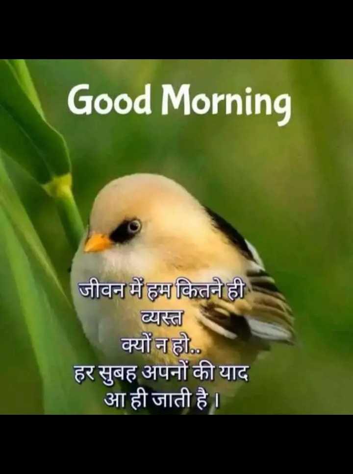 ❤ गुड मॉर्निंग शायरी👍 - Good Morning जीवन में हम कितने ही व्यस्त क्यों न हो . . हर सुबह अपनों की याद आ ही जाती है । - ShareChat