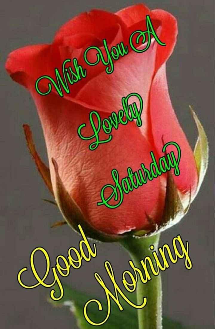 ❤ गुड मॉर्निंग शायरी👍 - Wish You A Samurdan clood Morning - ShareChat
