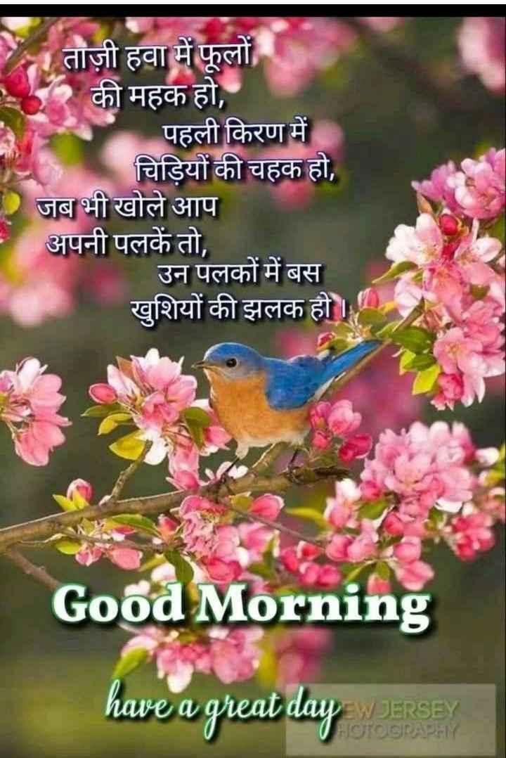 ❤ गुड मॉर्निंग शायरी👍 - ताज़ी हवा में फूलों की महक हो , पहली किरण में चिड़ियों की चहक हो , जब भी खोले आप अपनी पलकें तो , उन पलकों में बस खुशियों की झलक हो । Good Morning have a great day JERSEY HOTOGRAPHY - ShareChat
