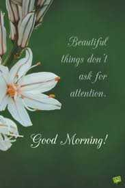 ❤वैलेंटाइन स्पेशल - Beautiful things don ask for allention . Good Morning ! - ShareChat