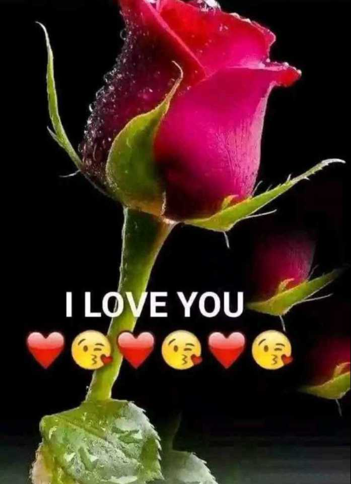❤️ आई लव यू - I LOVE YOU - ShareChat