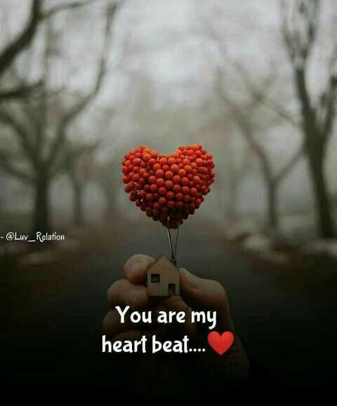 ❤️ లవ్ - - @ Luv _ Relation You are my heart beat . . . - ShareChat