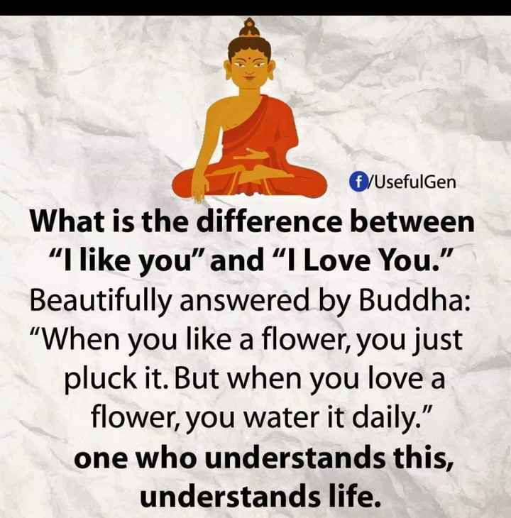 """❤️ പ്രണയം സ്റ്റാറ്റസുകൾ - € / UsefulGen What is the difference between """" I like you """" and """" I Love You . """" Beautifully answered by Buddha : """" When you like a flower , you just pluck it . But when you love a flower , you water it daily . one who understands this , understands life . - ShareChat"""