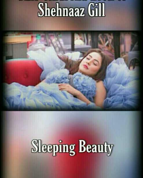 ❤️ Shehnaz Gill - Shehnaaz Gill Sleeping Beauty - ShareChat