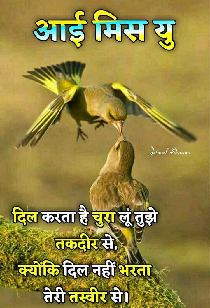❤miss you😔😔 - आई मिस यु Jelmal Sharma - दिल करता है चुरा लूं तुझे र तकदीर से , - क्योंकि दिल नहीं भरता - तेरी तस्वीर से । - ShareChat