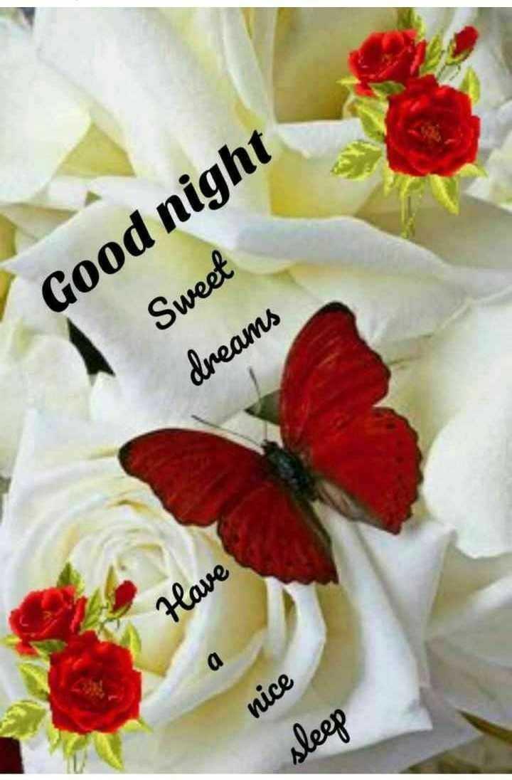 ⚖️ अंतर्राष्ट्रीय न्याय दिवस - Good night Sweet dreams Have а nice sleep - ShareChat