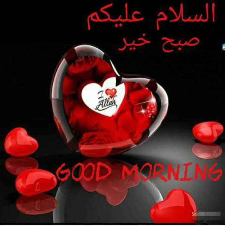 ☪️इबादत - السلام علیکم و صبح خیر GOOD MORNING - ShareChat