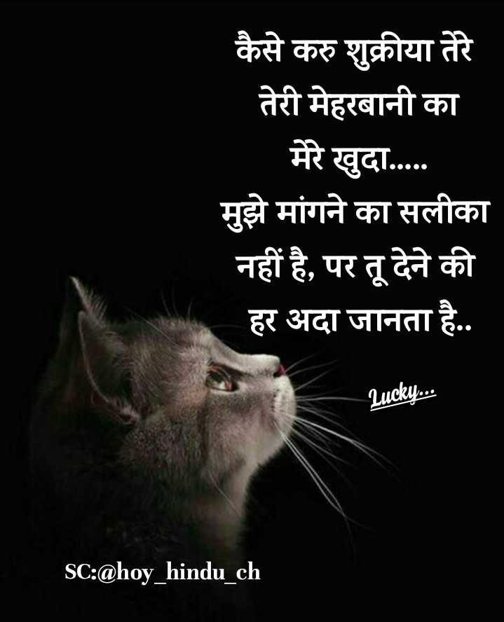 ☪️इबादत - कैसे करु शुक्रीया तेरे तेरी मेहरबानी का मेरे खुदा . . . . . मुझे मांगने का सलीका नहीं है , पर तू देने की हर अदा जानता है . . Lucky . . . SC : @ hoy _ hindu _ ch - ShareChat
