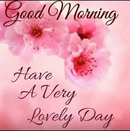 ☀️गुड मॉर्निंग☀️ - Good Morning Have A Very Lovely Day - ShareChat