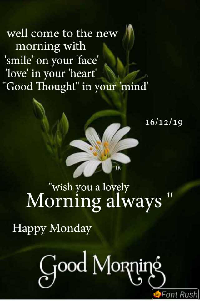 ☀️गुड मॉर्निंग☀️ - well come to the new morning with ' smile ' on your ' face ' ' love ' in your ' heart ' Good Thought in your ' mind ' 16 / 12 / 19 VIR wish you a lovely Morning always ' Happy Monday Good Morning Font Rush - ShareChat