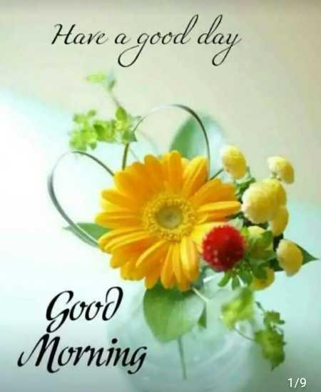 ☀️गुड मॉर्निंग☀️ - Have a good day Good Morning 1 / 9 - ShareChat