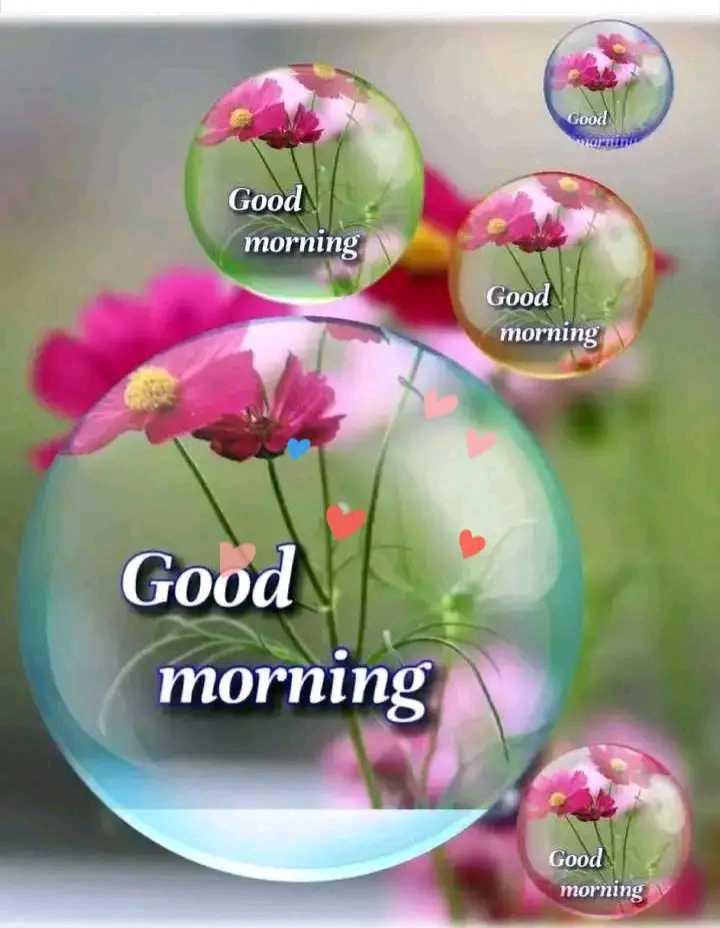 ☀️गुड मॉर्निंग☀️ - Good Good morning Good morning Good morning Good morning - ShareChat