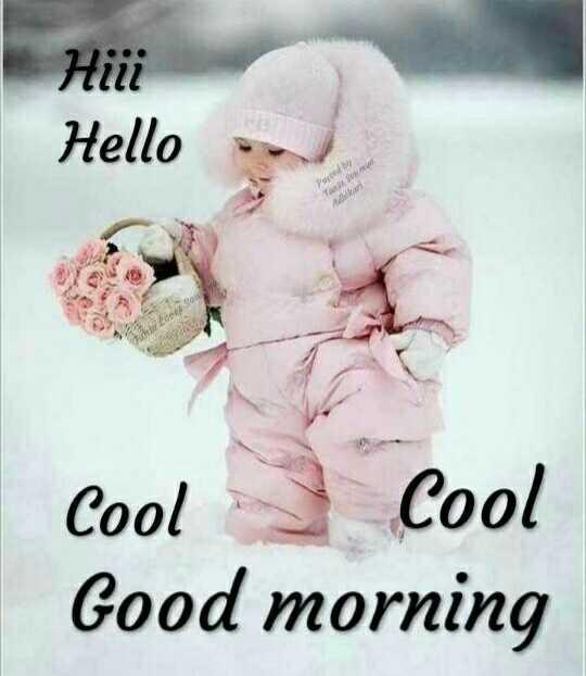 ☀️गुड मॉर्निंग☀️ - нііі Hello Pored by To Adlari Cool Cool Good morning - ShareChat