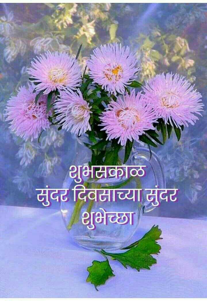☀️गुड मॉर्निंग☀️ - शुभसकाळ सुंदर दिवसाच्या सुंदर शुभेच्छा - ShareChat