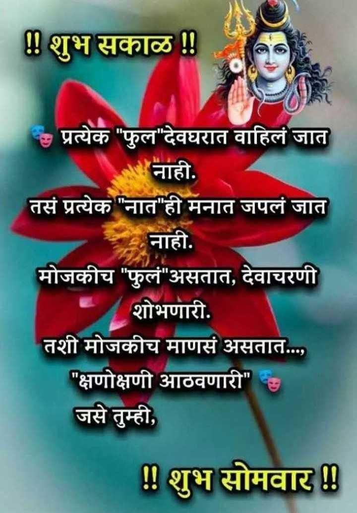 ☀️गुड मॉर्निंग☀️ - ! ! शुभ सकाळ ! ! - प्रत्येक फुल देवघरात वाहिलं जात नाही . तसं प्रत्येक नात ही मनात जपलं जात नाही . मोजकीच फुलं असतात , देवाचरणी शोभणारी . तशी मोजकीच माणसं असतात . . . , क्षणोक्षणी आठवणारी जसे तुम्ही , ! ! शुभ सोमवार ! ! - ShareChat