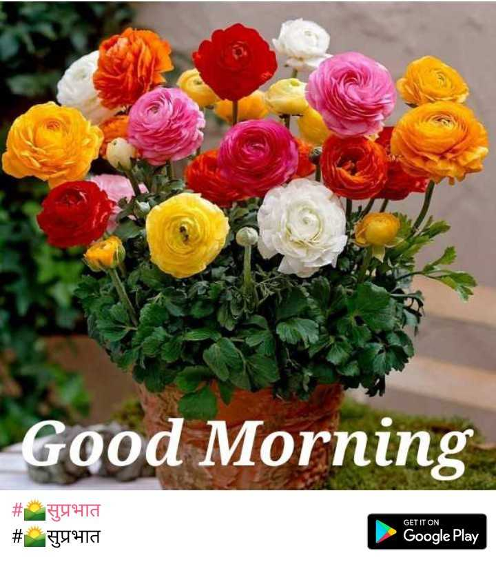 ☕️चहा - कॉफी प्रेमी - Good Morning सुप्रभात H4910 GET IT ON # Google Play - ShareChat