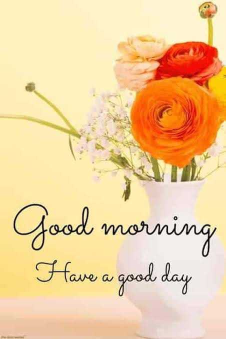 🖊️दर्द शायरी💔 - Good morning Have a good day - ShareChat