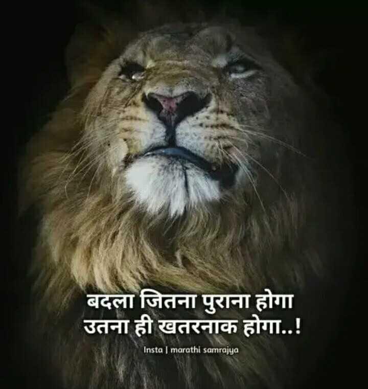 🏍️बाइक्स और कार्स🏎️ - बदला जितना पुराना होगा उतना ही खतरनाक होगा . . ! Insta   marathi samrajya - ShareChat