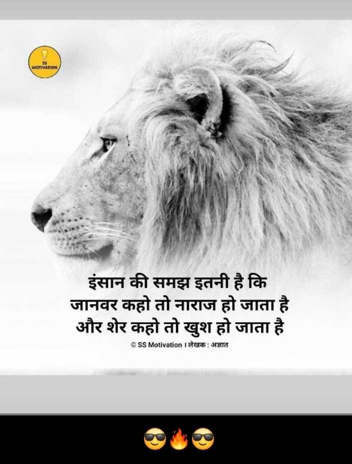🖊️मज़ेदार शायरी स्टेटस 😄 - MOTIVATION इंसान की समझ इतनी है कि जानवर कहो तो नाराज हो जाता है और शेर कहो तो खुश हो जाता है @ SS Motivation लेखक : अज्ञात - ShareChat