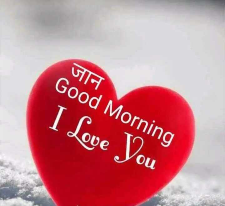 🖊️ लव शायरी और status ❤️ - जान Good Morning I Love You - ShareChat