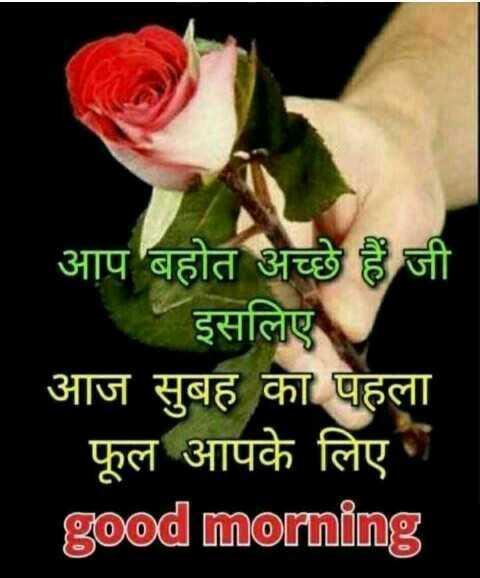 🖊️ लव शायरी और status ❤️ - आप बहोत अच्छे हैं जी इसलिए आज सुबह का पहला फूल आपके लिए good morning - ShareChat