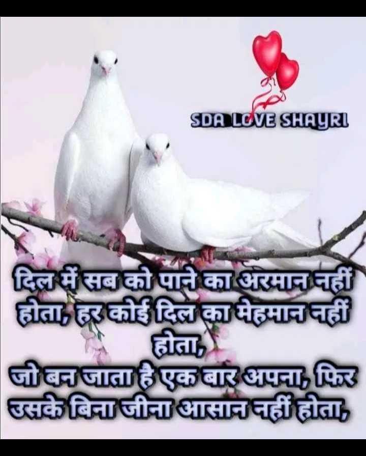 🖊️ लव शायरी और status ❤️ - SDA LOVE SHAYRI | दिल में सब को पाने का अरमान नहीं | होता , हर कोई दिल का मेहमान नहीं होता , जो बन जाता है एक बार अपना , फिर उसके बिना जीना आसान नहीं होता , - ShareChat