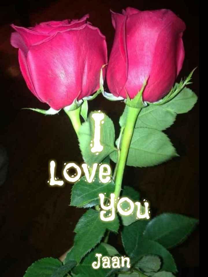🖊️ लव शायरी और status ❤️ - Love You Jaan - ShareChat