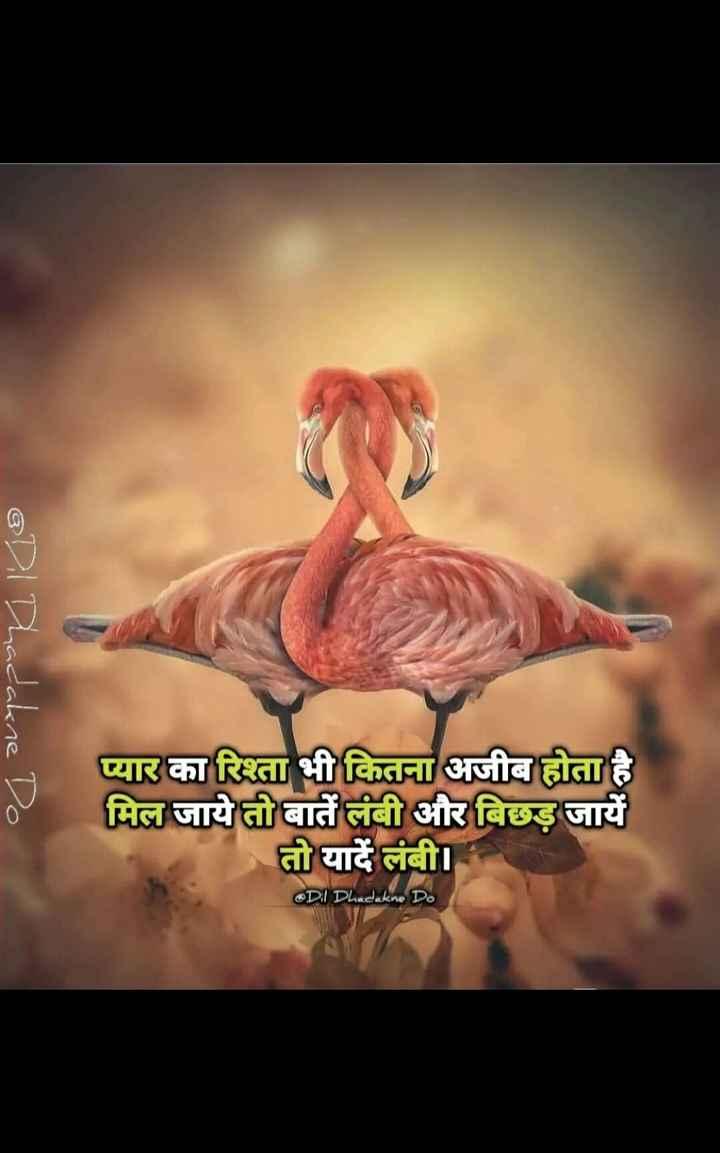 🖊️ लव शायरी और status ❤️ - @ Dil Dhadakne प्यार का रिश्ता भी कितना अजीब होता है मिल जाये तो बातें लंबी और बिछड़ जायें तो यादें लंबी । Dil Dhadakne D . - ShareChat