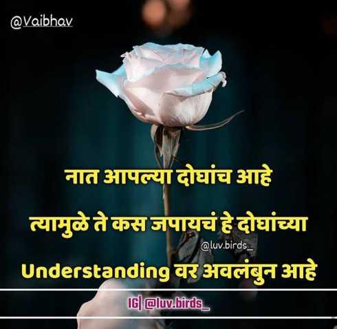 ♀️स्त्रीलिंग पुल्लिंग♂️ - @ Vaibhav नात आपल्या दोघांच आहे । त्यामुळे ते कस जपायचं हे दोघांच्या @ luv . birds _ Understanding वर अवलंबुन आहे IG @ luv . birds _ - ShareChat