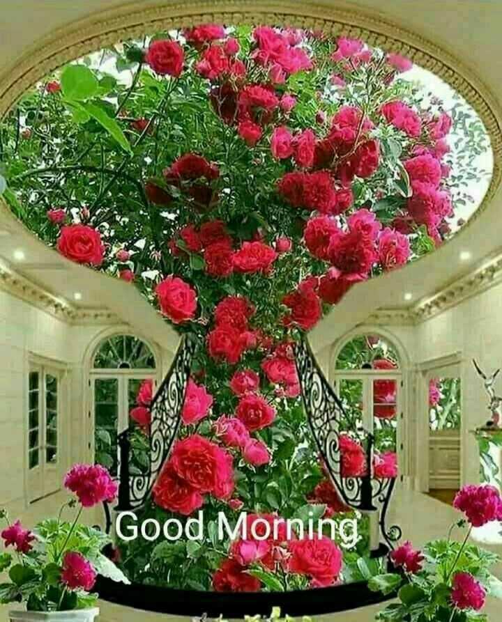 🖌️ ਮੇਰੀ ਸਕੈਚਿੰਗ 🎨 - * Good Morning 16 - ShareChat