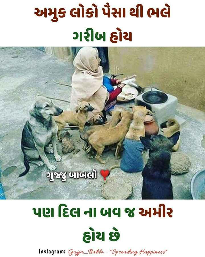 🏕️ અમારું કાઠિયાવાડ - અમુક લોકો પૈસા થી ભલે ગરીબ હોય ગુજ્જુ બાબલો પણ દિલ ના બવ જ અમીર હોય છે Instagram : Gujju _ Babla - Spreading Happinessi - ShareChat