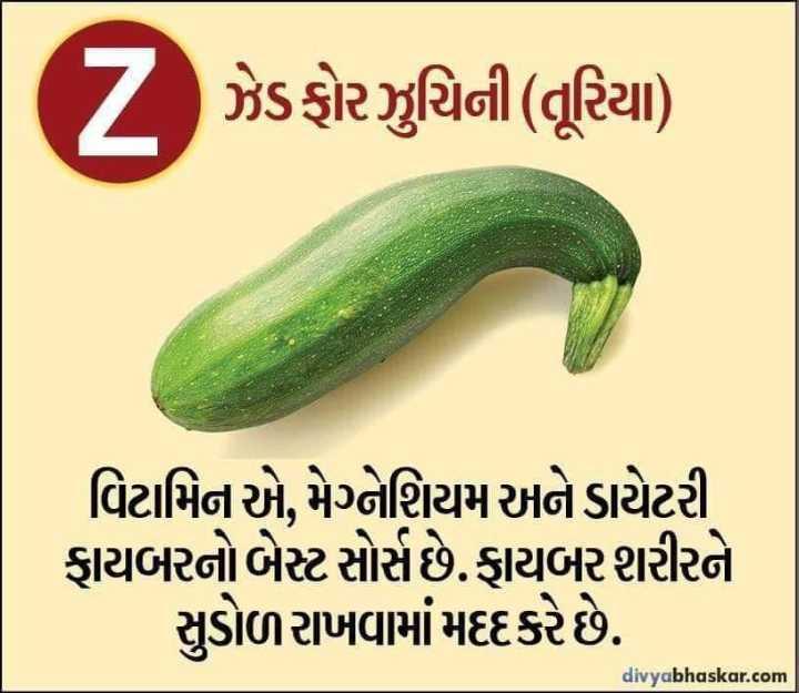 🎗️ રાષ્ટ્રીય કેન્સર જાગૃતિ દિવસ - ( Z ઝેડફોરઝુચિની ( તૂરિયા ) વિટામિન એ , મેગ્નેશિયમ અને ડાયેટરી ફાયબરનો બેસ્ટ સોર્સ છે . ફાયબર શરીરને સુડોળ રાખવામાં મદદકરે છે . divyabhaskar . com - ShareChat