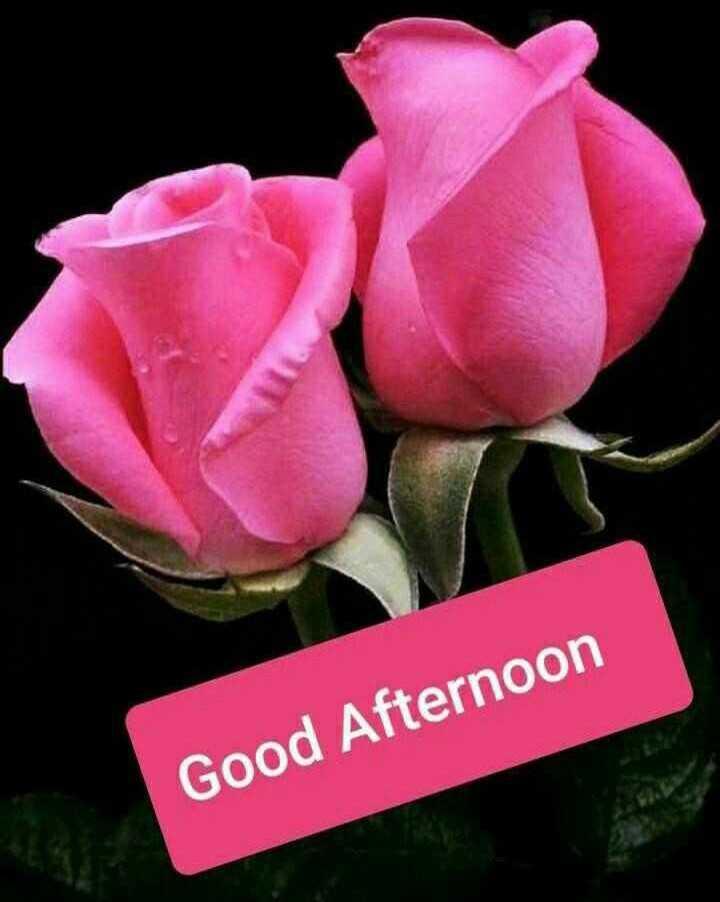 ☀️ શુભ બપોર - Good Afternoon - ShareChat