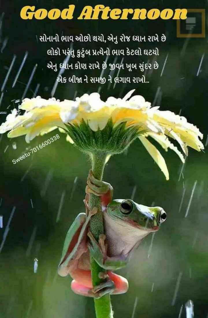 ☀️ શુભ બપોર - Good Afternoon ' સોનાનો ભાવ ઓછો થયો , એનુ રોજ ધ્યાન રાખે છે ' લોકો પરંતુ કુટુંબ પ્રત્યેનો ભાવ કેટલો ઘટયો ' એનું ધ્યાન કોણ રાખે છે જીવન ખૂબ સુંદર છે . એક બીજા ને સમજી ને લગાવ રાખો . sweetu - 7016600338 - ShareChat