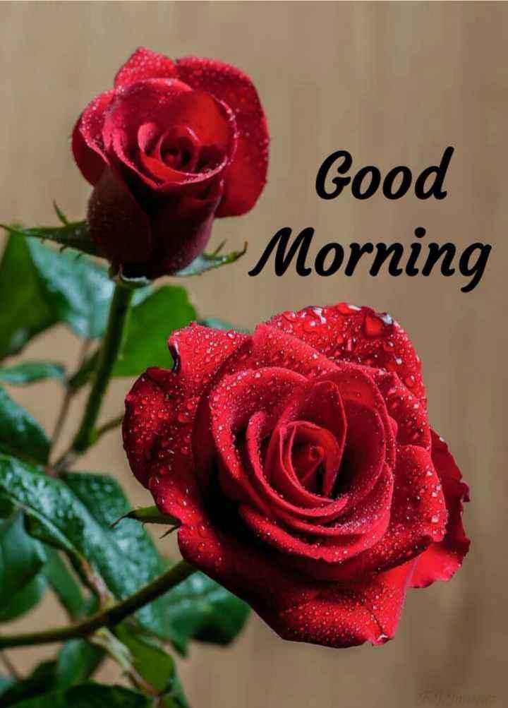 ☀️ શુભ બપોર - Good Morning - ShareChat