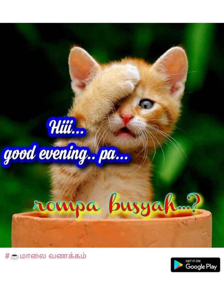 ☕️மாலை வணக்கம் - Hiii . . . good evening . . pa . . . rompa busyah . m3 # உமாலை வணக்கம் GET IT ON Google Play - ShareChat