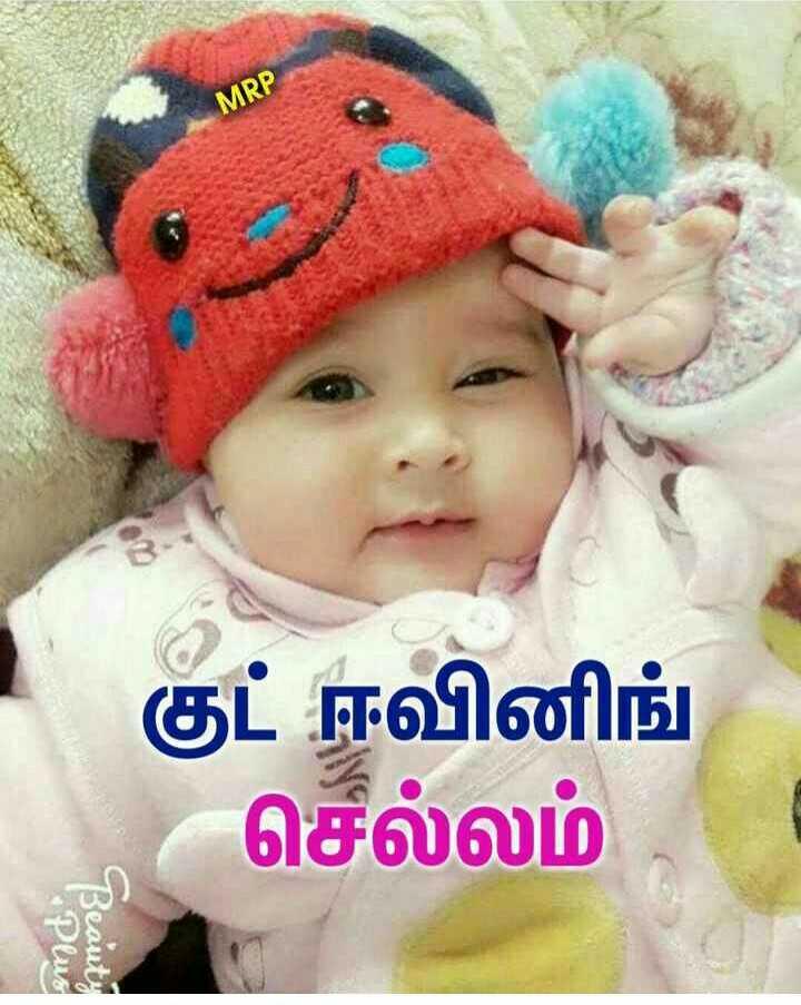 ☕️மாலை வணக்கம் - MRP குட் ஈவினிங் செல்லம் Plus Beauty - ShareChat