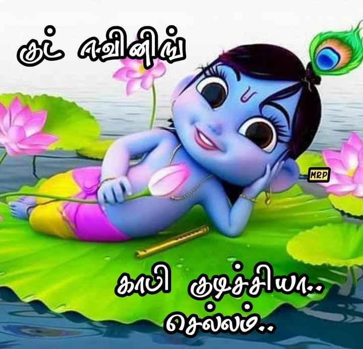 ☕️மாலை வணக்கம் - நீட் விதம் MRP காலி குடிச்சியா . . ) செல்லம் . . - ShareChat