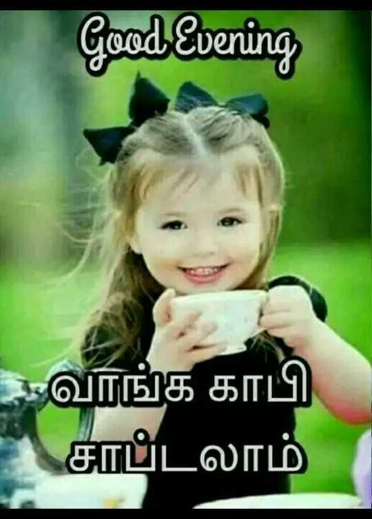 ☕️மாலை வணக்கம் - Good Evening வாங்க காபி சாப்டலாம் - ShareChat