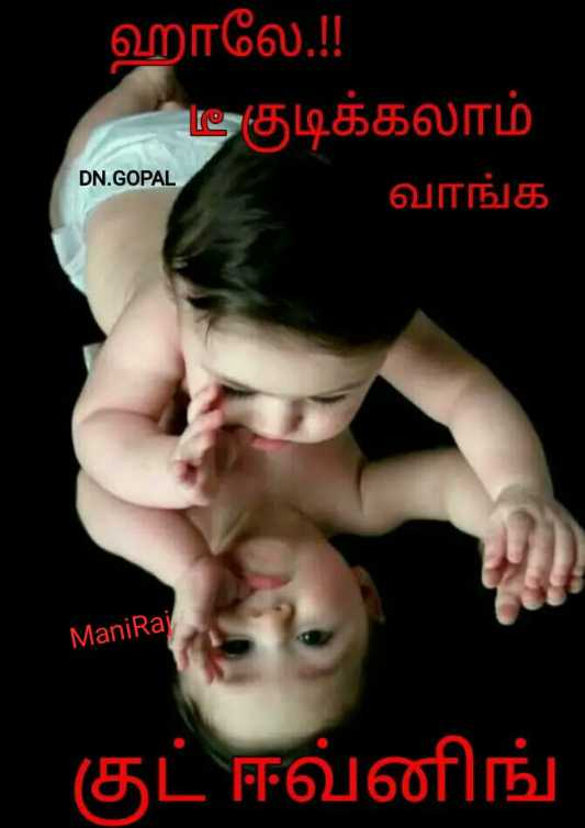☕️மாலை வணக்கம் - ஹாலே . ! ! - டீ குடிக்கலாம் வாங்க DN . GOPALI Mani Raj குட் ஈவ்னிங் - ShareChat