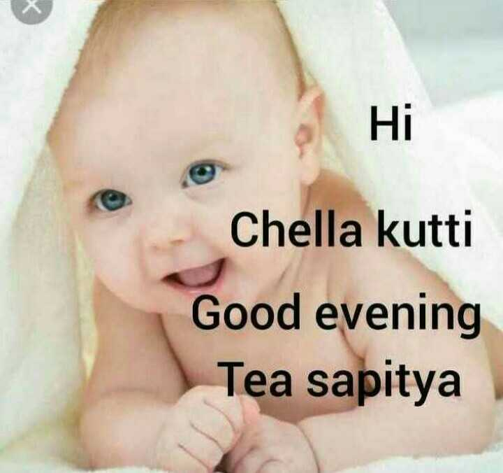 ☕️மாலை வணக்கம் - Ні Chella kutti Good evening Tea sapitya - ShareChat