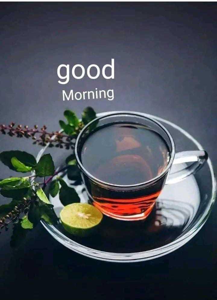 ☕️மாலை வணக்கம் - good Morning - ShareChat