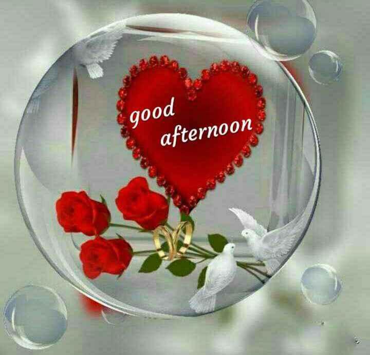 ☀️శుభమధ్యాహ్నం - good afternoon - ShareChat