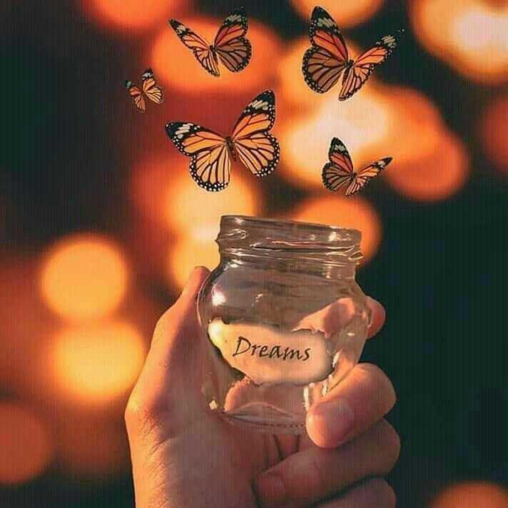 🏞️ ഇമേജ് സ്റ്റാറ്റസ് - Dreams - ShareChat