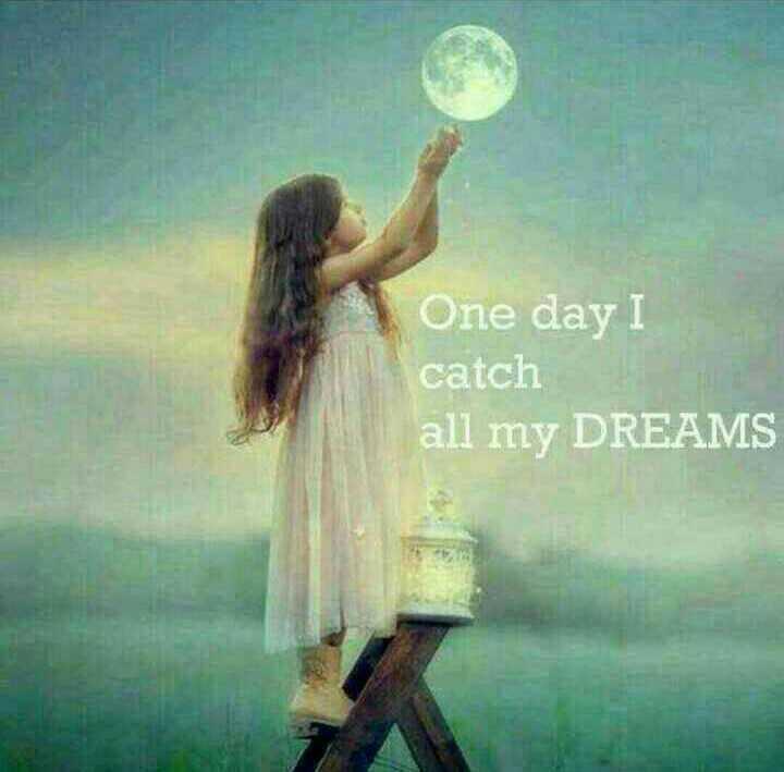 🏞️ ഇമേജ് സ്റ്റാറ്റസ് - One day I catch all my DREAMS - ShareChat